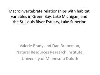 Valerie Brady and Dan Breneman, Natural Resources Research Institute,