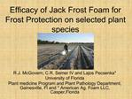 Efficacy of Jack Frost Foam for Frost Protection on selected plant species