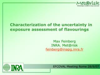 Characterization of the uncertainty in exposure assessment of flavourings