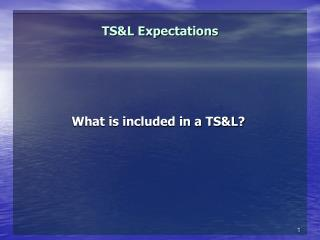 TS&L Expectations