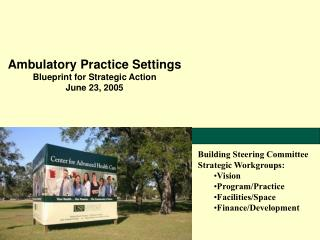 Ambulatory Practice Settings Blueprint for Strategic Action June 23, 2005
