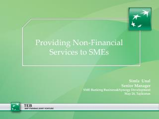 Providing Non-Financial Services to SMEs