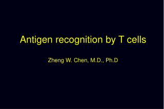 Antigen recognition by T cells Zheng W. Chen, M.D., Ph.D