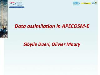 Data assimilation in APECOSM-E