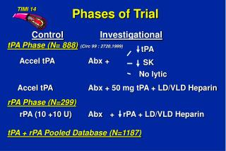Phases of Trial