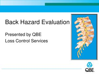 Back Hazard Evaluation