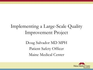 Implementing a Large-Scale Quality Improvement Project
