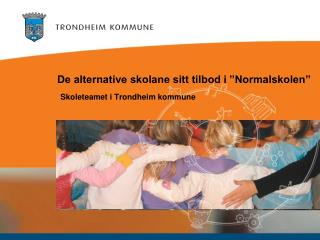 "De alternative skolane sitt tilbod i ""Normalskolen"""