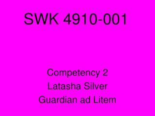 SWK 4910-001
