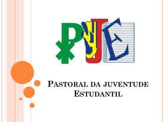 Pastoral da juventude Estudantil