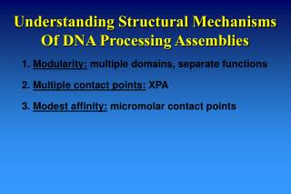 Understanding Structural Mechanisms Of DNA Processing Assemblies