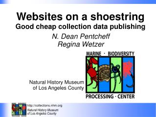 Websites on a shoestring Good cheap collection data publishing N. Dean Pentcheff Regina Wetzer