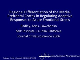 Radley, J. J. et al. J. Neurosci. 2006;26:12967-12976