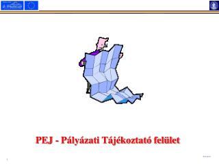 PEJ - Pályázati Tájékoztató felület