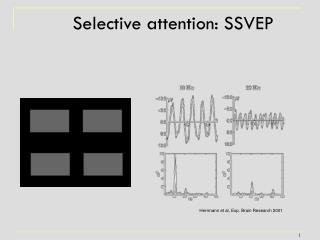 Selective attention: SSVEP