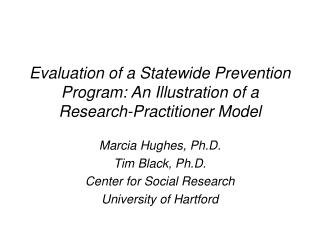 Evaluation of a Statewide Prevention Program: An Illustration of a Research-Practitioner Model