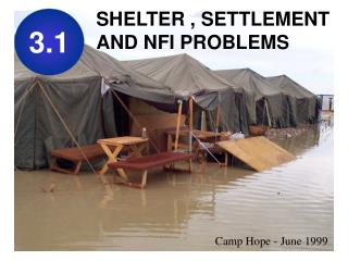 SHELTER , SETTLEMENT AND NFI PROBLEMS