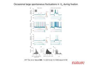 AYY Tan  et al. Nature  000 , 1-4 (2014) doi:10.1038/nature13159