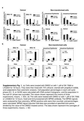 Non-transformed cells
