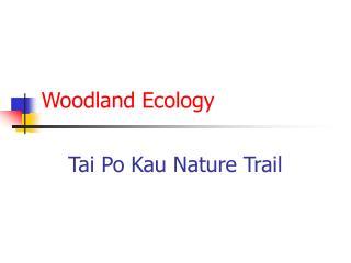 Woodland Ecology