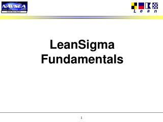 LeanSigma Fundamentals