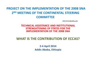 PROJECT ON THE IMPLEMENTATION OF THE 2008 SNA 2 ND  MEETING OF THE CONTINENTAL STEERING COMMITTEE