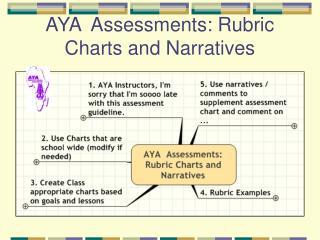 AYA  Assessments: Rubric Charts and Narratives