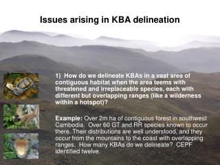Issues arising in KBA delineation
