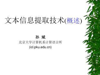 孙  斌 北京大学计算机系计算语言所 (icl.pku)