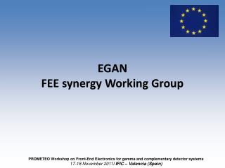 EGAN FEE synergy Working Group