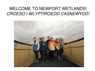 WELCOME TO NEWPORT WETLANDS! CROESO I WLYPTIROEDD CASNEWYDD!