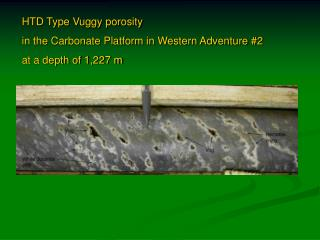 HTD Type Vuggy porosity  in the Carbonate Platform in Western Adventure #2