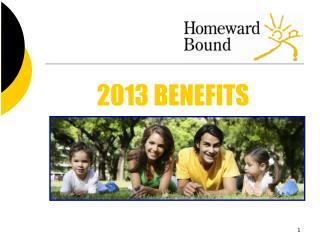 2013 BENEFITS
