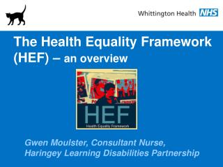 The Health Equality Framework (HEF) –  an overview