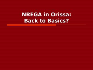 NREGA in Orissa: Back to Basics