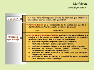 Morfolog�a