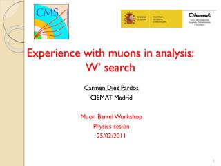Experience with  muons in  analysis : W'  search