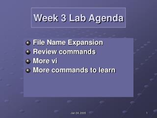 Week 3 Lab Agenda