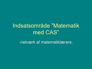 """Indsatsområde """"Matematik med CAS"""""""