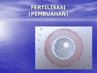 FERTILISASI (PEMBUAHAN)