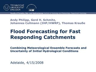 Flood Forecasting for Fast Responding Catchments