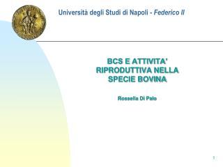 Universit� degli Studi di Napoli -  Federico II