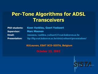 Per-Tone Algorithms for ADSL Transceivers
