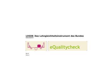LOGIB: Das Lohngleichheitsinstrument des Bundes Instrument 8