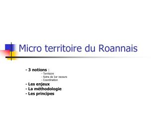 Micro territoire du Roannais