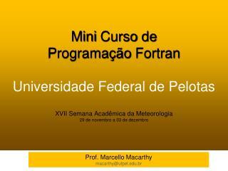 Prof. Marcello  Macarthy macarthy@ufpel.br