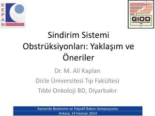 Sindirim Sistemi Obstrüksiyonları: Yaklaşım ve Öneriler