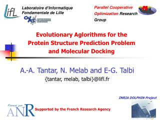 Evolutionary Aglorithms for the Protein Structure Prediction Problem and Molecular Docking