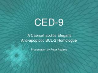 CED-9