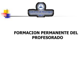 FORMACION PERMANENTE DEL PROFESORADO